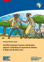 Conflicts between farmers and herders against a backdrop of asymmetric threats in Mali and Burkina Faso