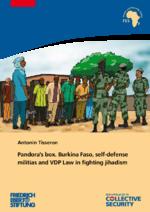 Pandora's box. Burkina Faso, self-defense militias and VDP law in fighting jihadism